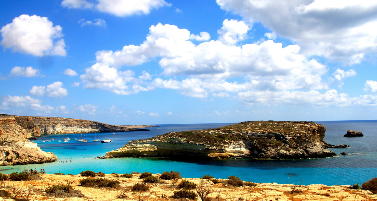 Isola dei Conigli, Lampedusa | Foto Lucio Sassi (© BY-NC-ND 3.0 IT)