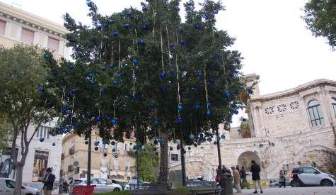 Natale: a Cagliari in piazza l'Albero dei Desideri