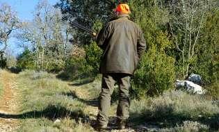 Piromani arrestati: volevano uccidere forestali