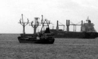 Cargo pieno di bovini alla deriva al largo di Cagliari