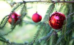 Un Natale sempre più social per 7 sardi su 10