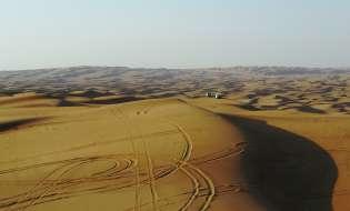 Coltivare nel deserto, a Dubai si sperimenta