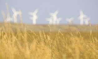 Rinnovabili ma impattanti, pronti altri 60 progetti nell'isola
