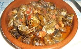 Cucina di Sardegna: Lumache al sugo