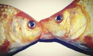 Attenzione al Pesce d'Aprile