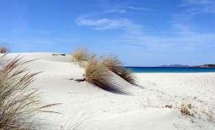 Spiagge di Sardegna: Spiaggia di Porto Pino