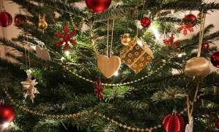 L'albero di Natale va sempre e comunque di moda!
