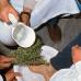 I riti della Settimana Santa in Sardegna: Su lavabu