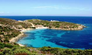 Il Parco Nazionale dell'Asinara | Fotogallery