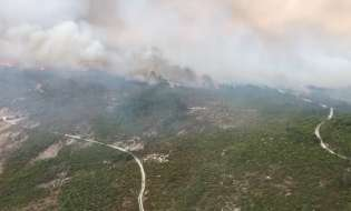 Incendi, pene più pesanti e licenziamento per i piromani