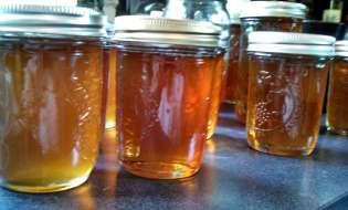 Il dolce e naturale miele sardo: il superfood che ci accompagna dalle origini - 1