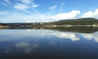 Moria di pesci nel Lago Omodeo, tra inquinamento e cambio climatico