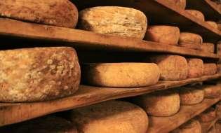 La fake news dell'Onu contro il formaggio sardo