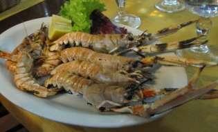 Microplastiche nel piatto, rischio crostacei in Sardegna