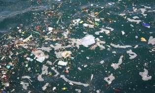 Basta rifiuti in mare: ora a Cagliari e Olbia c'è Seabin