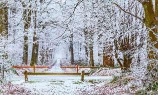 Arriva l'inverno, meglio stufa o climatizzatori?