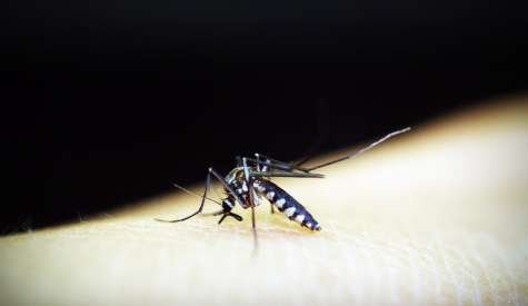 Testato in Sardegna il liquido bio che stermina le zanzare
